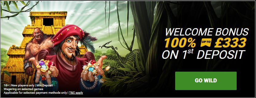 gowild casino review banner