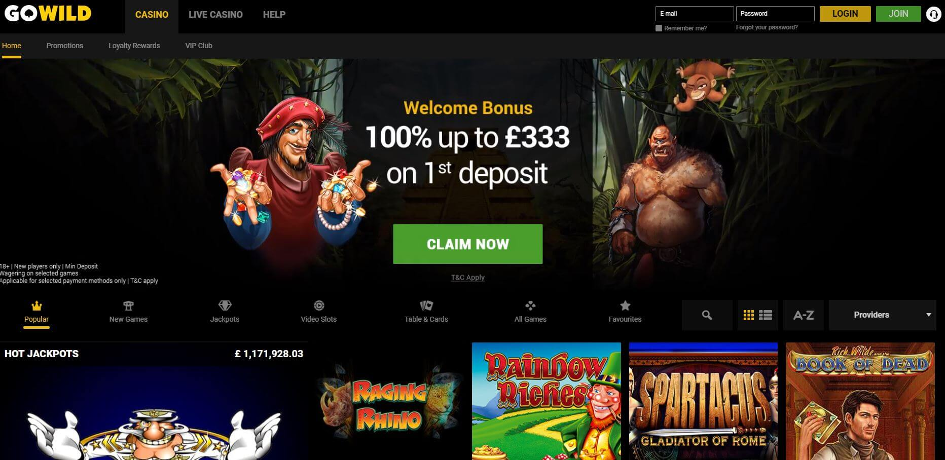 gowild casino review homepage