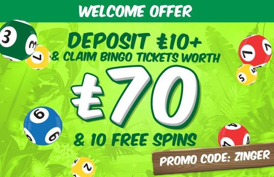 Zinger Bingo welcome offer