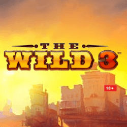 The Wild 3 slot review